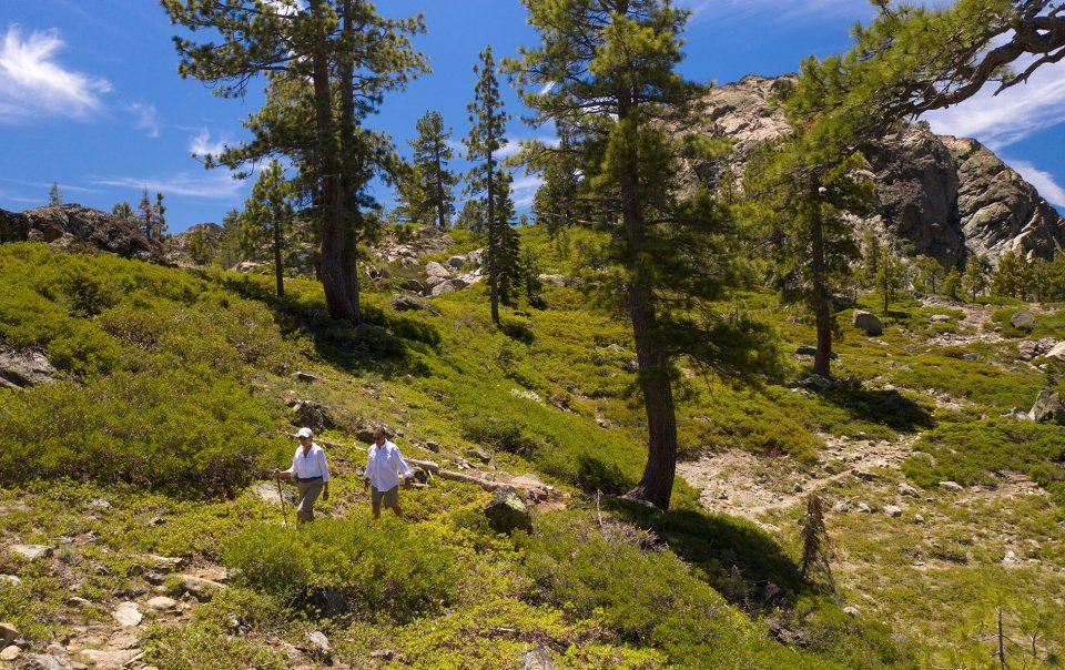 Hiking Sierras Plumas Trails